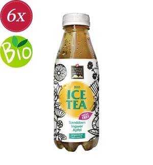 Bio Ice Tea Sugarfree Ingwer - 6x 50 cl