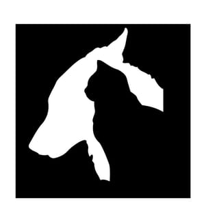 Wanddekoration Cat and Dog - 50 x 50 cm