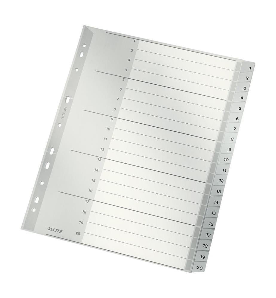 LEITZ - Register PP A4 12840000 1-20 grau