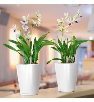 9er-Set Blumenkästen mit Integriertem Bewässerungssystem Deltini - Weiss