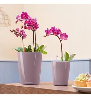 9er-Set Blumenkästen mit Integriertem Bewässerungssystem Deltini - Taupe