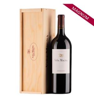 1x Magnum Vina Magna Ribera del Duero Crianza 2010 à 150 cl