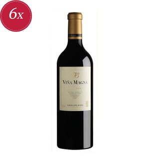6x Vina Magna Reserva Ribera del Duero DO 2015