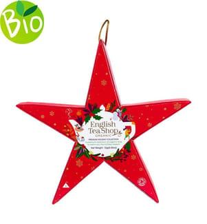 """Weihnachtsstern """"Pink Star"""" - 6 Tee-Pyramidenbeutel"""